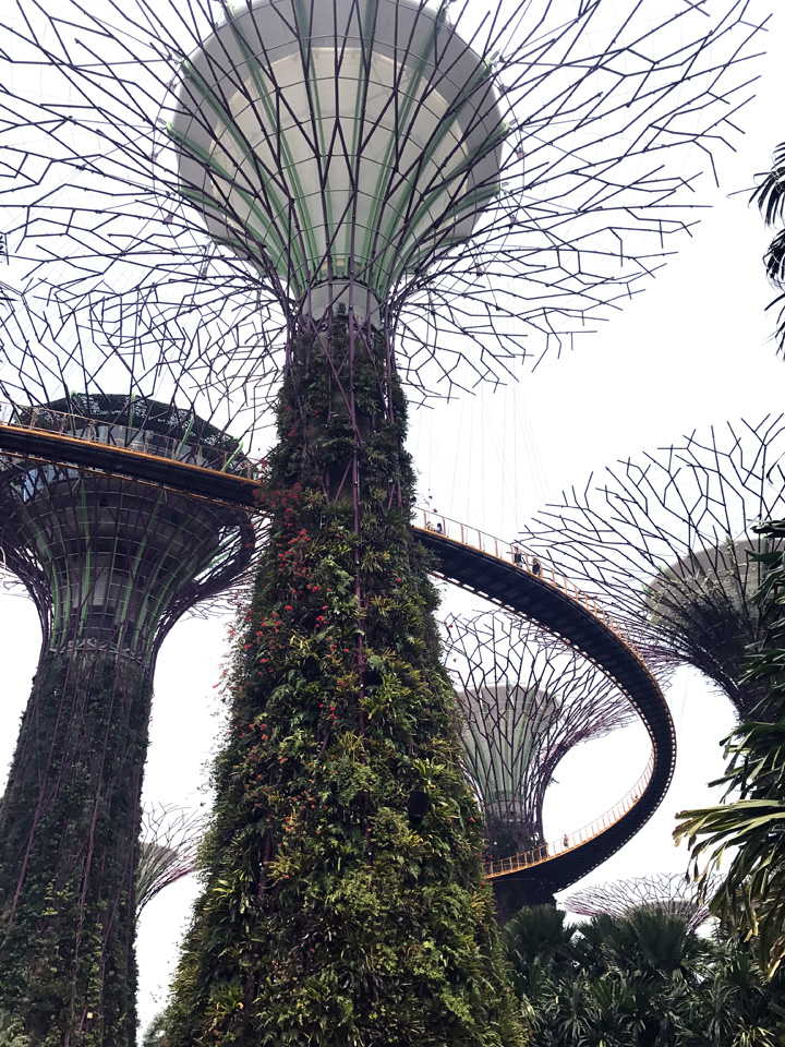 Top Best Attractions Singapore